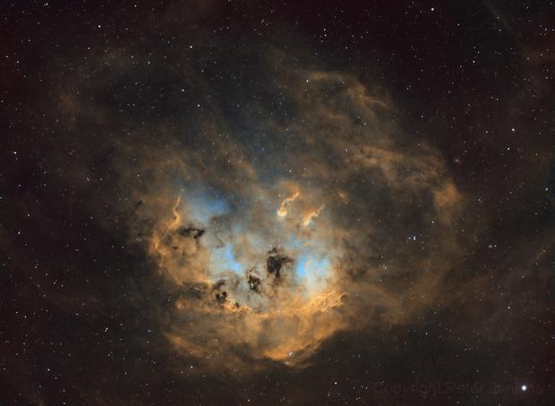 IC410 Tadpole Nebula,                                Peter Jenkins