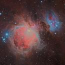 M42 / M43 Great Orion Nebula,                                Ulli_K