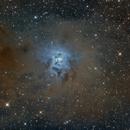 Iris Nébula ngc 7023,                                Robertastro