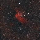 NGC 7380 - WIZARD NEBULA,                                Alessandro Curci