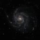 M101,                                Benni12345