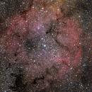 IC1396 w/ EDPH76,                                Joostie