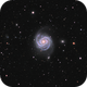 M 100,                                Mark Kuehner
