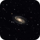 M81 Cropped,                                Lucas Maguire