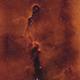 IC1396,                                Rich