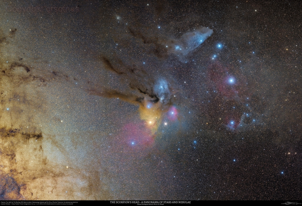 The Scorpion's Head - A Panorama of Stars and Nebulae,                                Gabriel R. Santos...