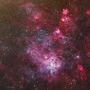 NGC 2070,                                Nikita Misiura