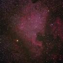 North American Nebula,                                allen456