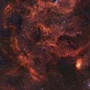 Sh2-101 Tulip Nebula Bi-Color,                                John Travis