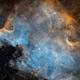 North America Nebula - NCG7000 in SHO,                                Tom Dinneen