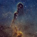 The Elephant's Trunk Nebula,                                Gabe Shaughnessy