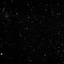 NGC 1912 (M38) and 1907 - salt and pepper,                                Tom Gray