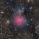 The Little Cocoon Nebula (Little Trifid Nebula), Sharpless 2-82 (Sh2-82),                                Boris US5WU