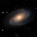 Messier 81 - Bode's Galaxy,                                Paul Borchardt