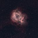 Rosette Nebula NGC 2237,                                Mateus