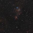 NGC 2264,                                Carles Zerbst