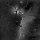 Alnitak area with B33 - IC434 - NGC2023 - NGC2024 - IC432 en Ha 3nm,                                Jean-François Douroux
