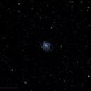 Pinwheel Galaxy (M101) and NGC 5474,                                Michael Jaramillo