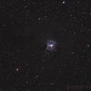 NGC 7023 - IRIS NEBULA,                                Marco Favro