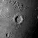 Copernicus,                                Lucca Schwingel Viola