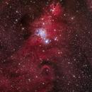 NGC2264 The Cone Nebula,                                Jerry Huang