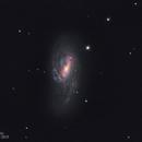 M66 ARP16 (Leo Triplet),                                John Michael Bellisario