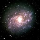 Pinwheel Galaxy,                                Nathan Shobe