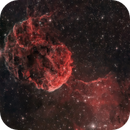 Jellyfish Nebula,                                joec.