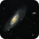M106 under a bright moon,                                Stefan Böckler