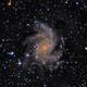 NGC 6946 - Fireworks Galaxy,                                David Andra