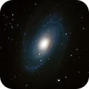 Messier 81 (Bodes Galaxy),                                MJF_Memorial_Observatory