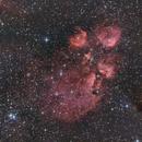 Cat's Paw Nebula,                                Samuel Müller