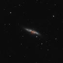 M82 and SN2014J,                                Pietro Canepa