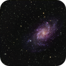 Triangulum Galaxy - M 33,                                Sasho Panov