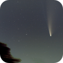 Comet Neowise from Steubenville,                                Zach Coldebella