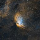 Sharpless 101 (Tulip Nebula),                                André Bremer