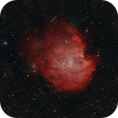 The Monkey Head nebula / NGC 2174,                                Francesco