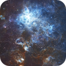 The Tarantula Nebula,                                onebackpacker