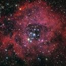 NGC2237 - Rosetta Nebula,                                pasquito