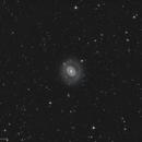 M94 / The Cat's Eye Galaxi,                                Marc Verhoeven