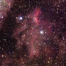 Pelican Nebula,                                Jim Medley