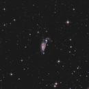 Heron Galaxies  NGC 5394/95 (Arp 84),                                sky-watcher (johny)