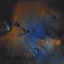 Cone nebula NGC2264 & chritsmas tree cluster HaSHO starless.,                                lukfer