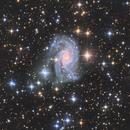 NGC2835,                                Almos Balasi