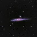 NGC 4631,                                Martin Armbrecht