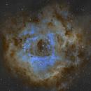 NGC 2244 (Rosette Nebula),                                Brian Sweeney