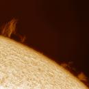 Solar chromosphere ad prominente 20210425,                                Sergio Alessandrelli
