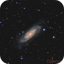 NGC 3198,                                Lorenzo Siciliano