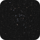 The Coma Star Cluster,                                William Maxwell