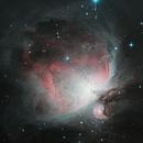 Orion Nebula,                                Mau_Bard